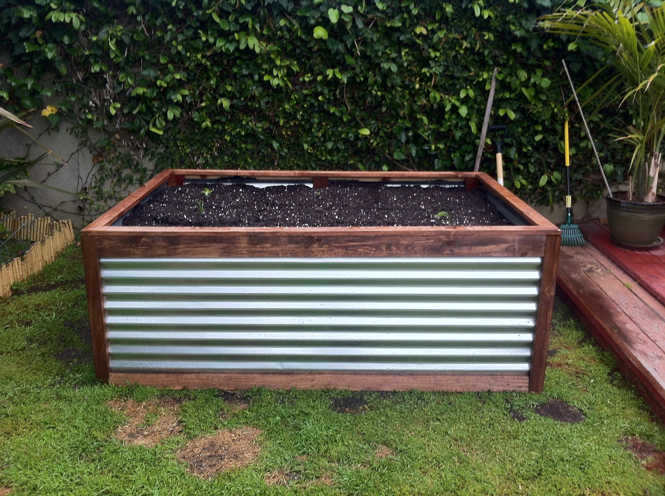 cheap corrugated metal planter box on a tight budget