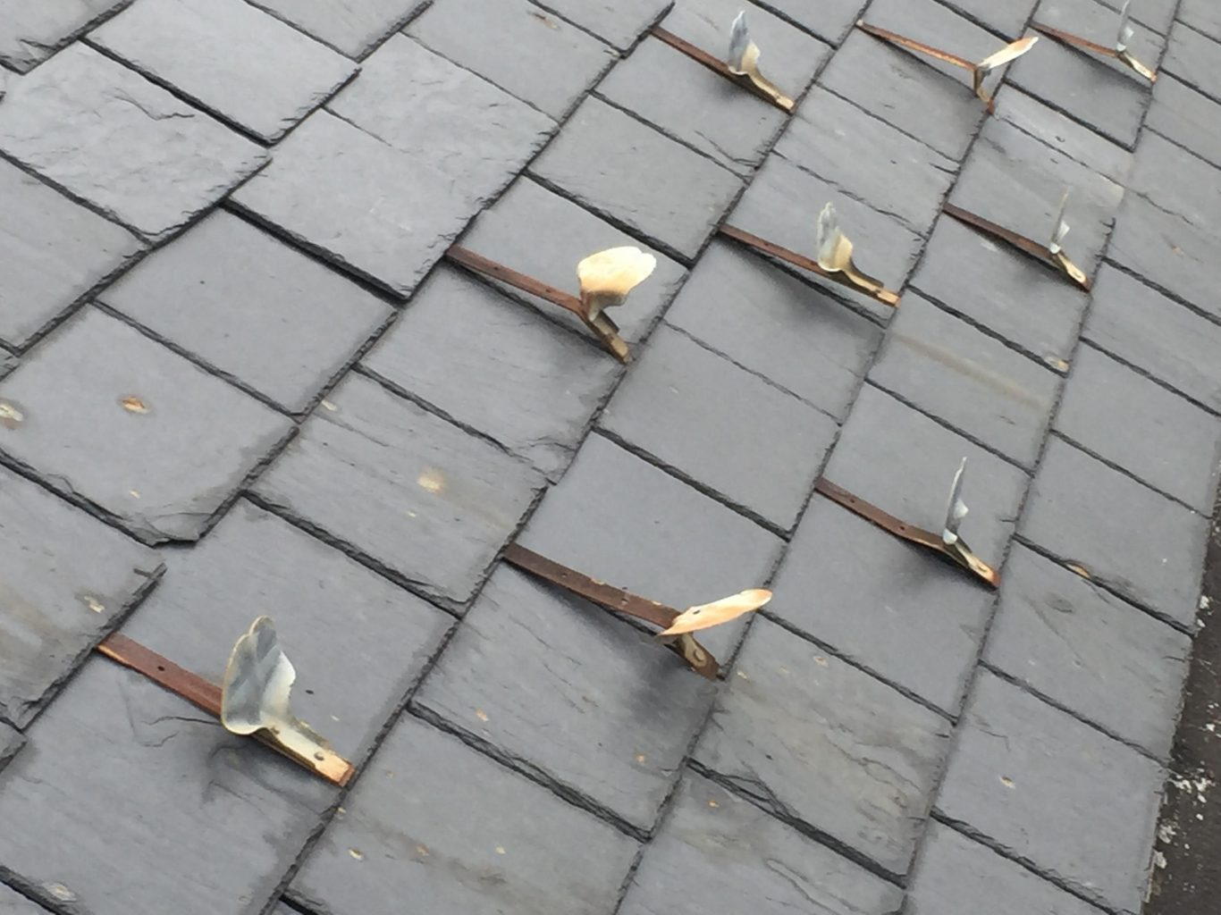 best metal roof snow guards on a budget